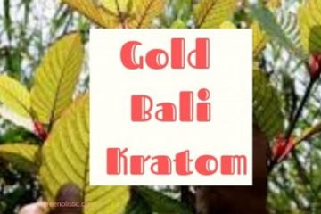 Gold Bali Kratom – Background – User Reviews & Benefits