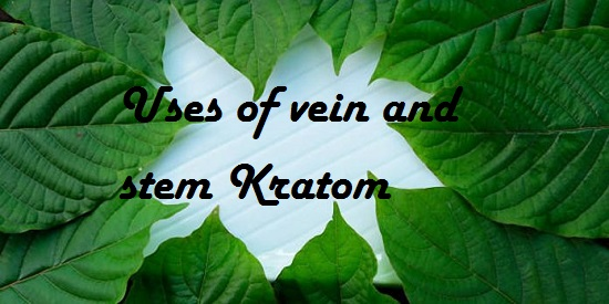 Uses of vein and stem Kratom