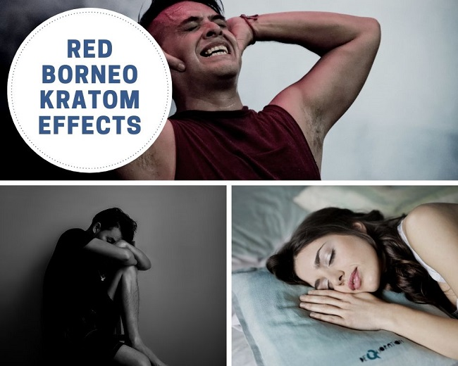 Red Borneo Kratom effects (2)